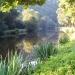 lumière matinale sur le canal